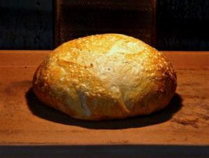 Dr Doughlittle | Bread Baking | No Knead Bread