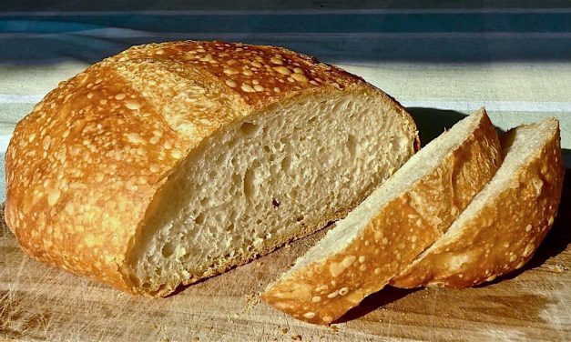 THE NO KNEAD BREAD