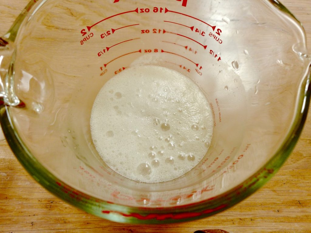 Dr Doughlittle | Water, yeast and coconut mixture