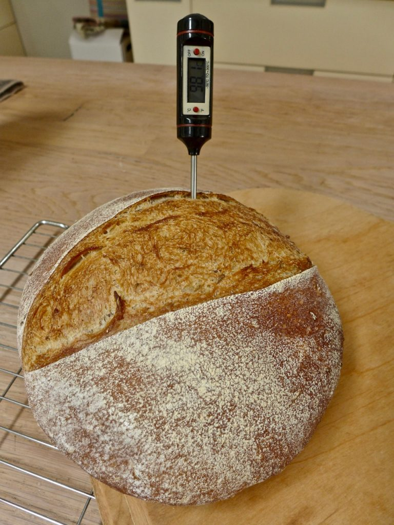 Dr Doughlittle | Measuring temperature of Sourdough bread
