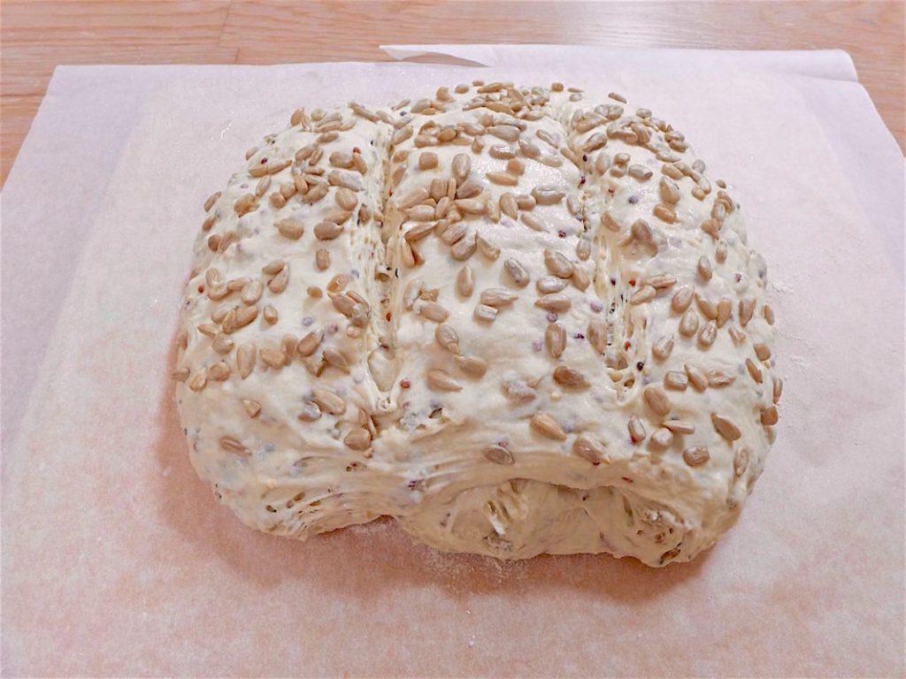 Dough after proofing   Dr Doughlittle