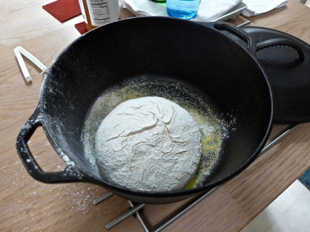 Dough in Dutch Oven | Dr Doughlittle