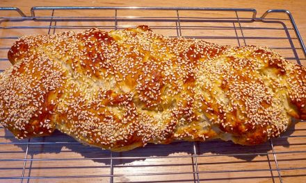 CHALLAH IN A BAG! THE LAZY COOK'S CHALLAH