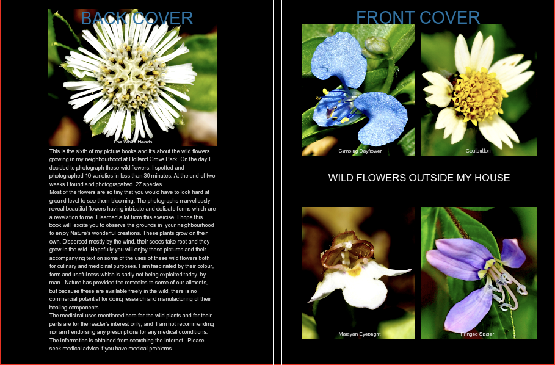 """Front and Back Cover of """"Wild Flowers Outside My House"""" 